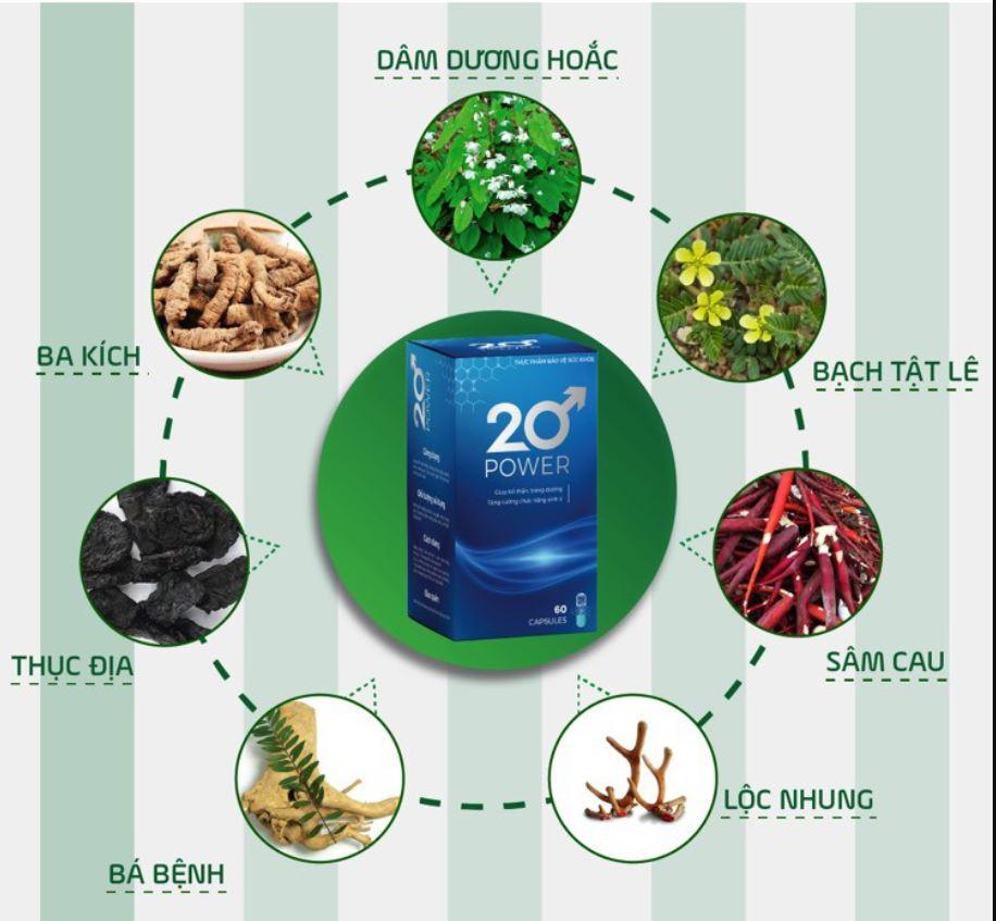 20 POWER có thành phần từ các dược liệu quý thiên nhiên